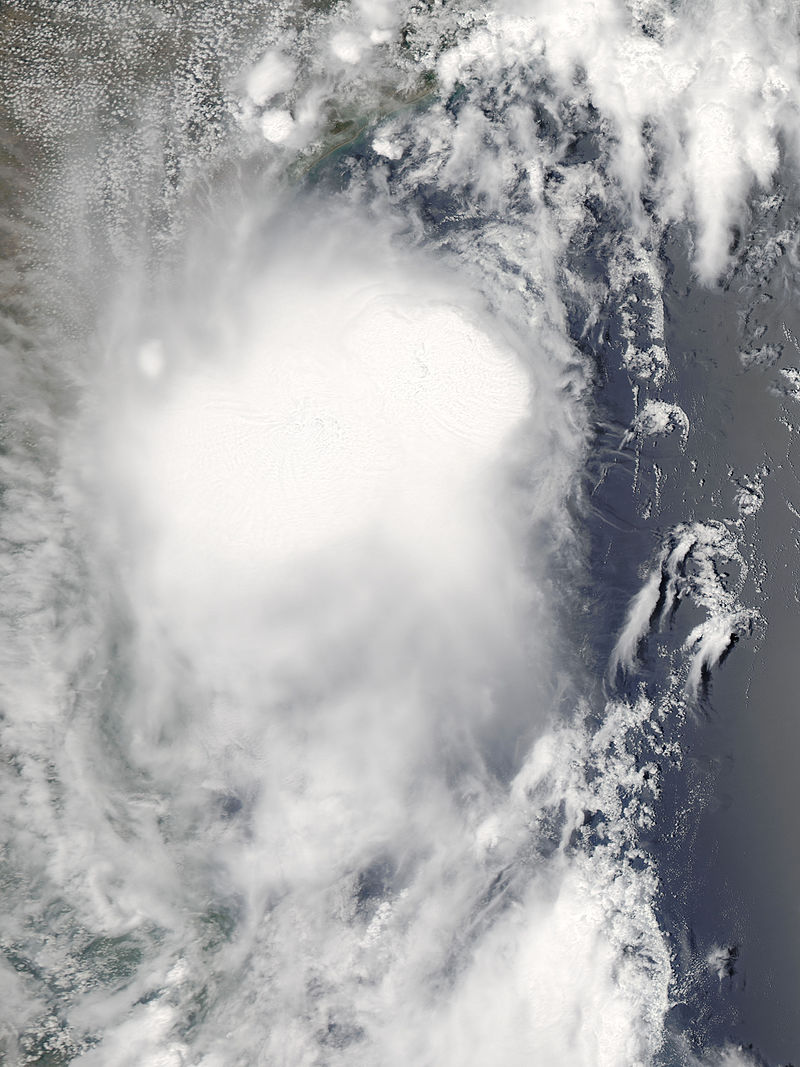 Tropical_Storm_Don_Jul_29_2011_1915Z